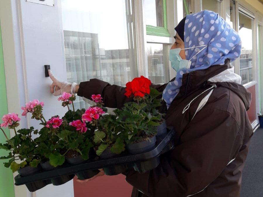 Een bloemetje voor de ouderen aan de Steenhouwersgaarde